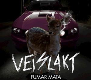 """Veislakt release video """"De Sma"""""""