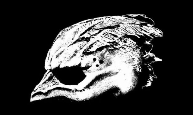 Legend of the Seagullmen released their titletrack
