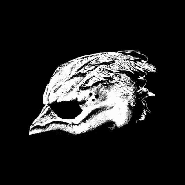 "Legend of the Seagullmen released the song ""Shipswreck"""