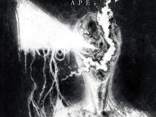 """Jinjer released a video for """"Ape"""""""