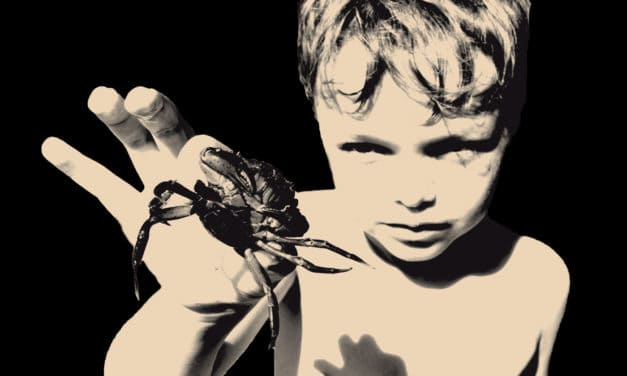 "MAYFLOWER MADAME Announces New Album ""Prepare for a Nightmare"""